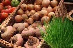 igrit, internetowa giełda rolna i towarowa