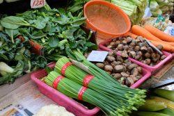 warzywa Chiny